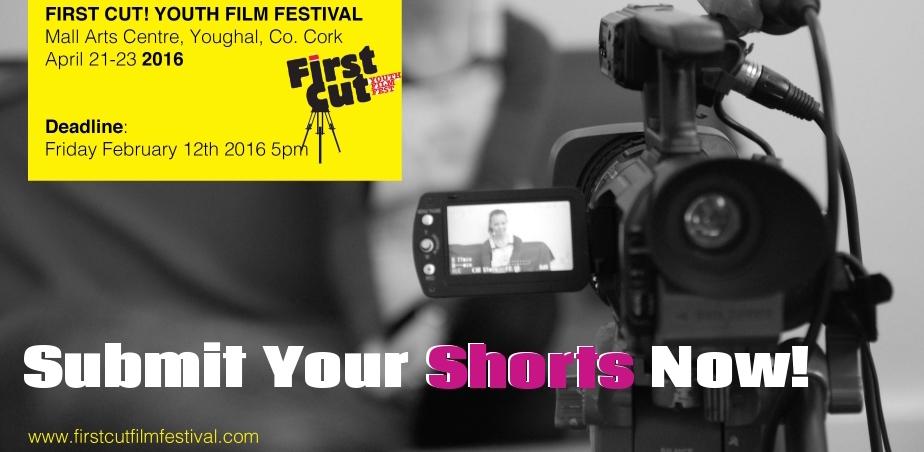 http://www.firstcutfilmfestival.com